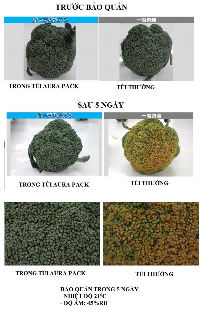 túi Bảo quản nông sản sau thu hoạch