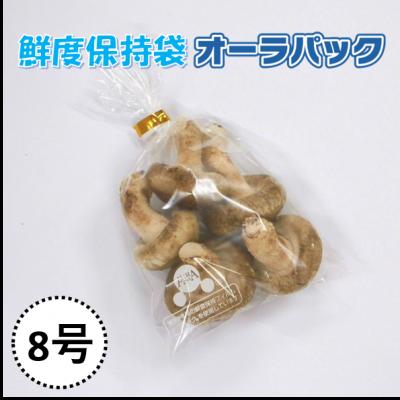 Túi bảo quản nấm